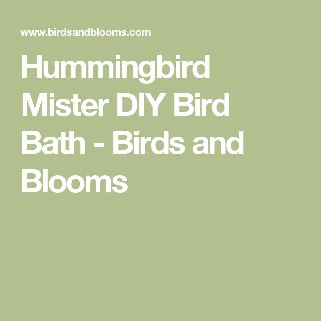 Hummingbird Mister DIY Bird Bath - Birds and Blooms