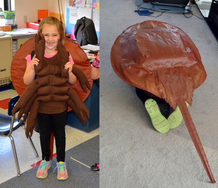 Horseshoe crab costume