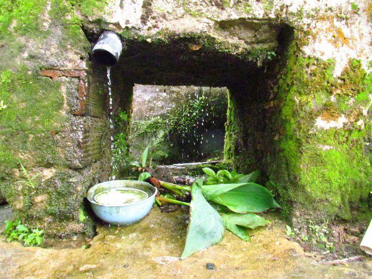 El agua y el verde de Cocorna. Ant.Col