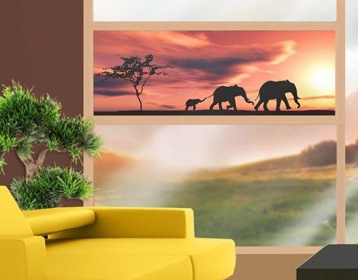 #Fensterfolie - #Sichtschutz #Fenster #Savannah #Elefant Family - #Fensterbilder #Spätsommer #goldener #Herbst #endlesssummer #Farbrausch #Farben #gelb #orange #braun #farbenfroh