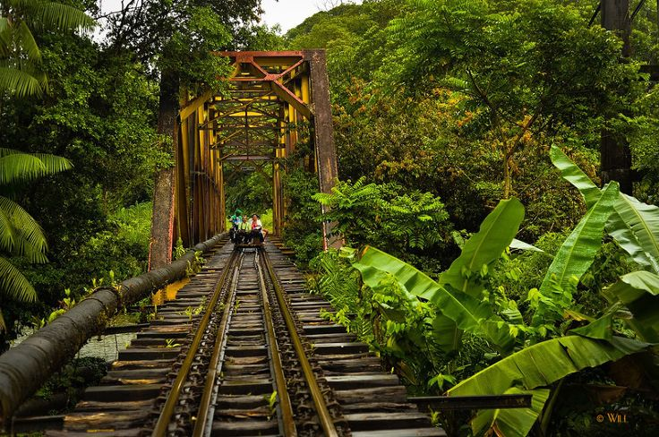 San Cipriano – Colombia. Travel from here for 7km (4mi) on an old railroad track in a Brujita, a wooden cart powered by a motorcycle & the adventure begins!
