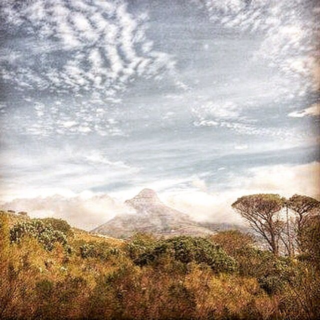 Lion's Head viewed from Deer Park Photo Koos Rossouw