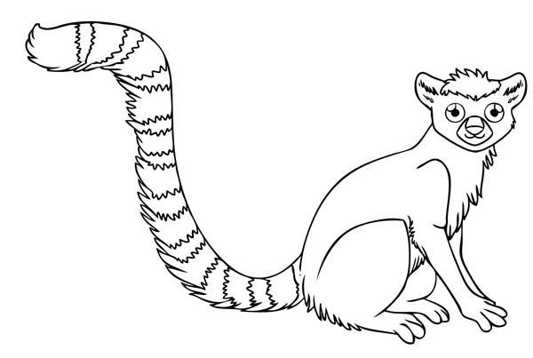 2164 best images about coloring pages on pinterest for Ring tailed lemur coloring pages