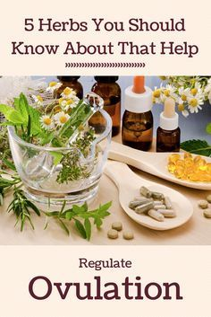 5 herbs you should know about that help regulate ovulation.