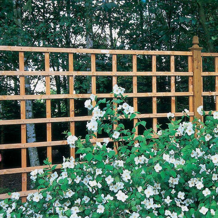 Garden Trellis Arley Garden Trellis 6x6jpg 800x800