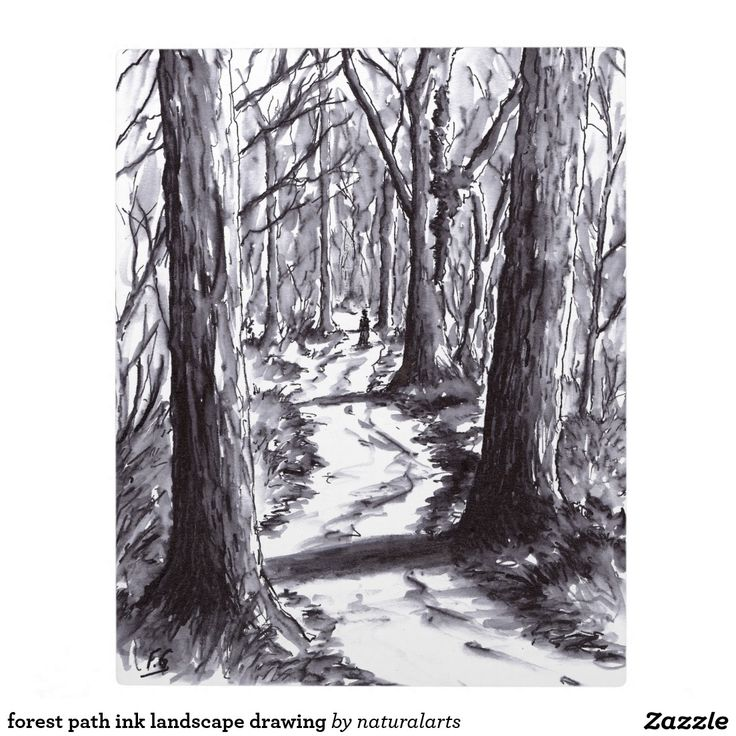 forest path ink landscape drawing photo plaques