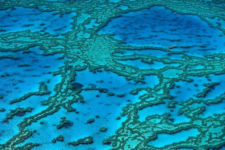 Great Barrier reef, Queensland, Australia  Yann Arthus-Bertrand