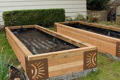 sub-irrigated raised garden beds