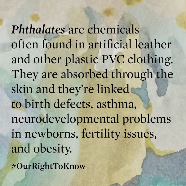 Phthalates are chemicals often found in artificial leather and other plastic PVC clothing.