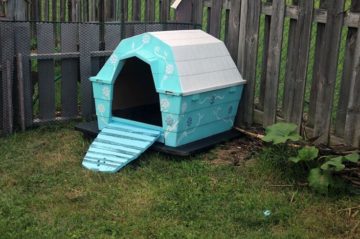 Duck house from a repurposed dog house added door that for Plastic duck house