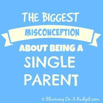 What single parents wish you understood about single parenting and the assumption that you may be making that just isn't true! BLOOMING ON A BUDGET