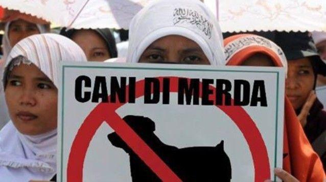 Cani di merda! Profughi mussulmani protestano contro un canile. Però…