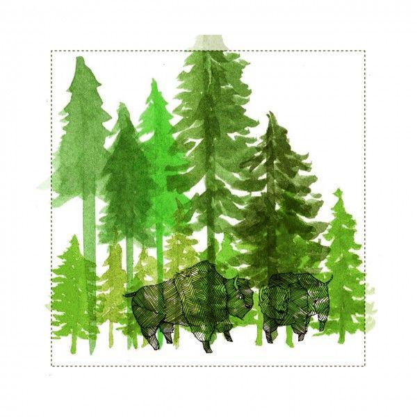 lucy engelman: Watercolor Art, Forests, Ideas, Art Inspiration, Bison, Engelman Artworks, Lucy Engelman, L Art, Lucyengelman