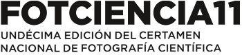 Concurso. Fotciencia11. Hasta el 31 de octubre