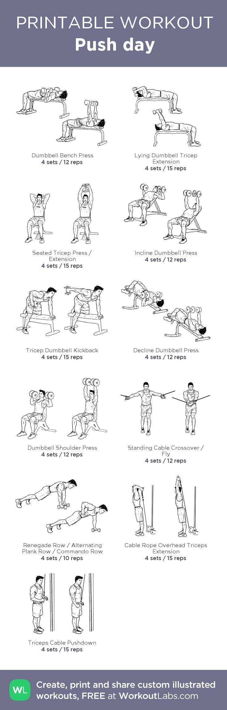 Push day: my custom printable workout by @WorkoutLabs #workoutlabs #customworkout