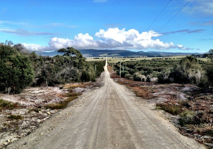 The road from The Patriarchs Wildlife Sanctuary - Flinders Island