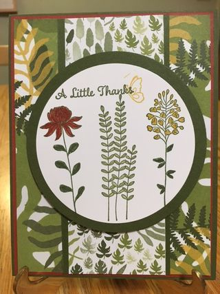 Flower Fields Sale-A-Bration Stamp Set; One Big Meaning Thanks; 2016 Stampin' Up Occasions and Sale-A-Bration Catalogs