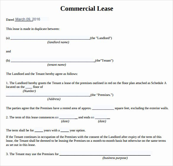Free Printable Commercial Lease Agreement Lovely 10 Sample