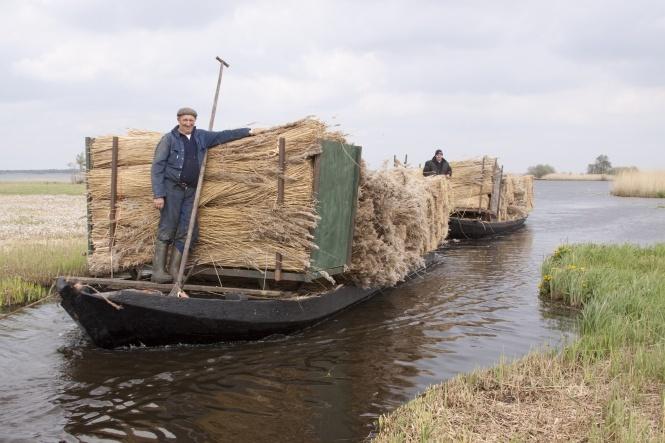 Boat with 'Riet' at national park 'De Weerribben'.