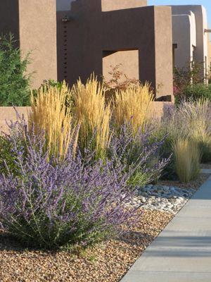 Calamogrostis Karl Forester And Russian Sage Ornamental Grasses Front Garden Landscape