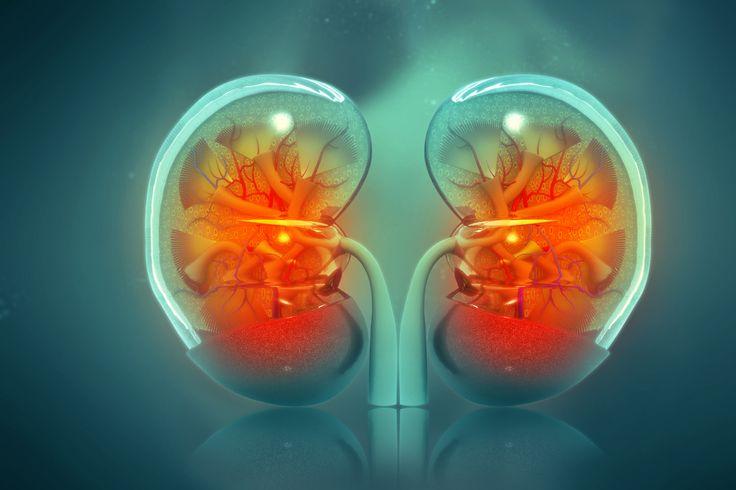 10 Symptoms of Kidney Failure