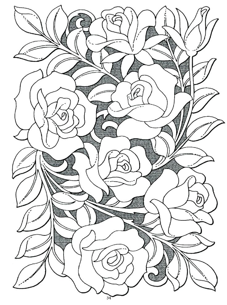 136 best Roses to Color images on Pinterest Coloring books