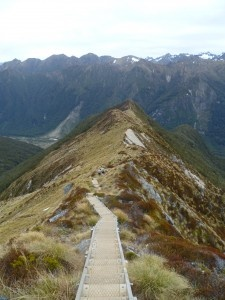 The Kepler Track New Zealand. Incredibly beautiful - Walk it in 4-5 days or run the 60km Kepler Challenge Ultra Marathon