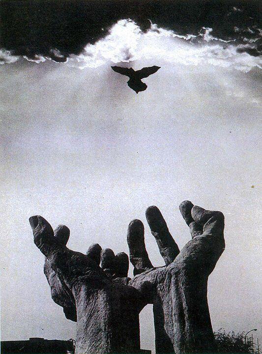 Hands by Metin Yurdanur