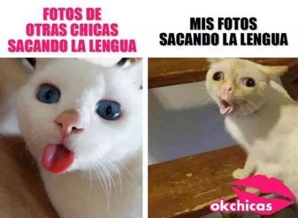 41 Ideas For Memes En Espanol Chistosos Ok Chicas – #chicas #chistosos #en #espa…