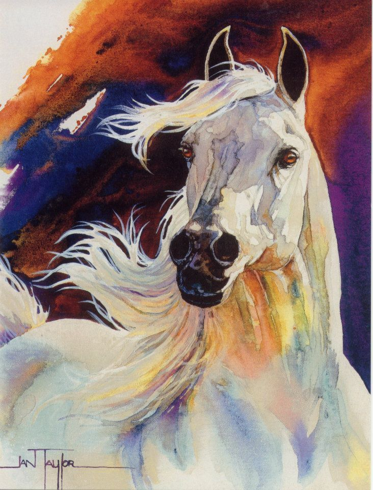 #Horse Art: Jan Taylor (White Horse) (Dunway Enterprises) http://dunway.com/horse_articles/index.html                                                                                                                                                     More