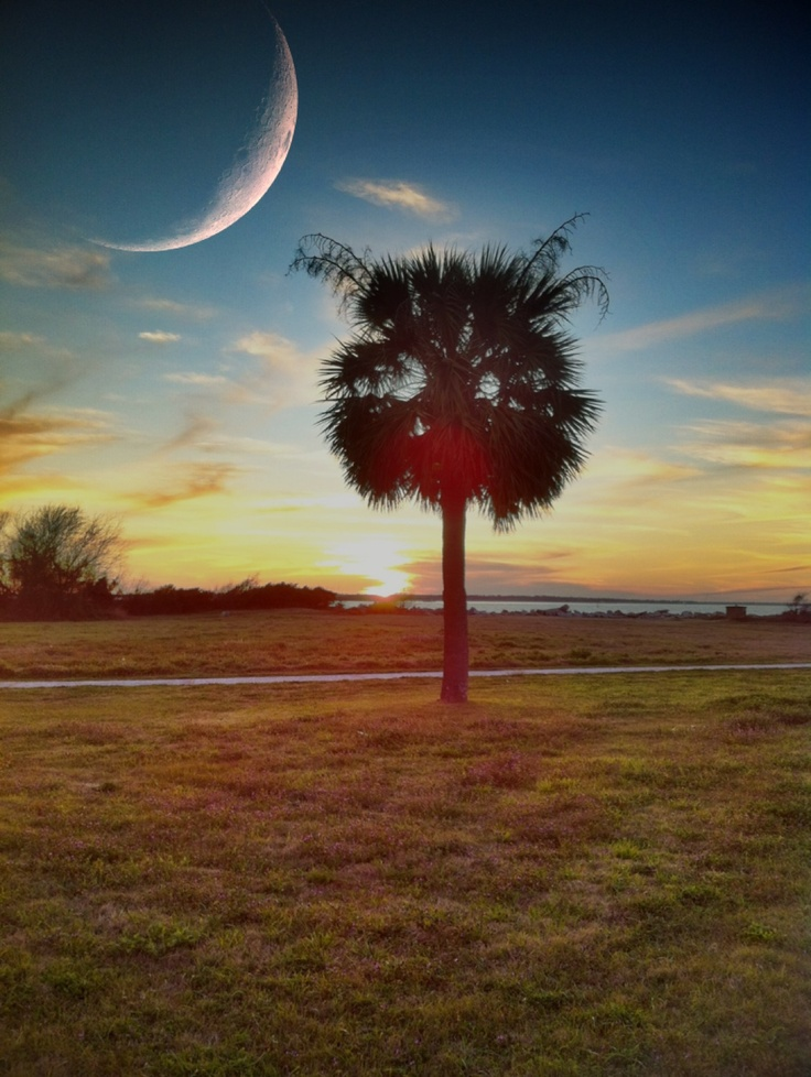 17 best images about south carolina scenery on pinterest