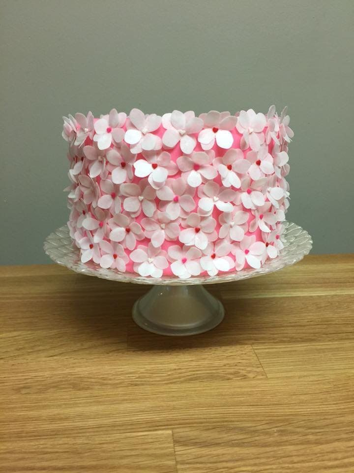 Beautiful cherry blossom cake. Made in to a video tutorial on youtube. tiny little wafer paper flowers covering this beautiful pink cake.
