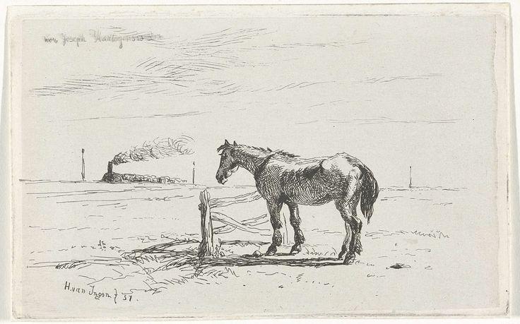 Henry van Ingen | Paard in een weiland, Henry van Ingen, , Joseph Hartogensis, 1857 | Paard bij een hek in een weiland. Aan de horizon rijdt een stoomtrein.