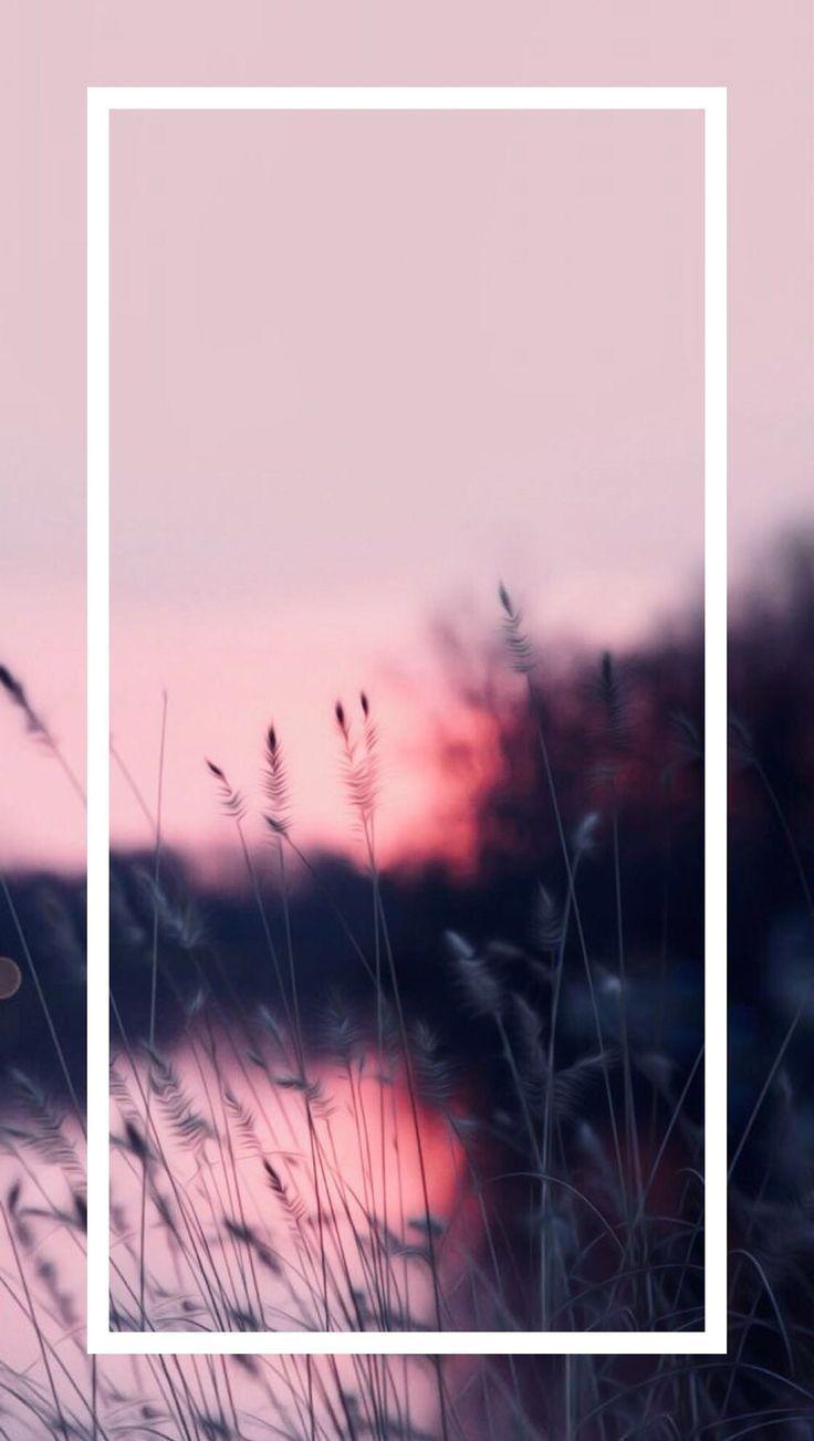 3d garten mit rosa blumen und wald hintergrundbild…
