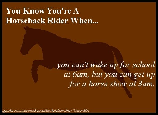 You know you're a horseback rider when...you can't wake up ...