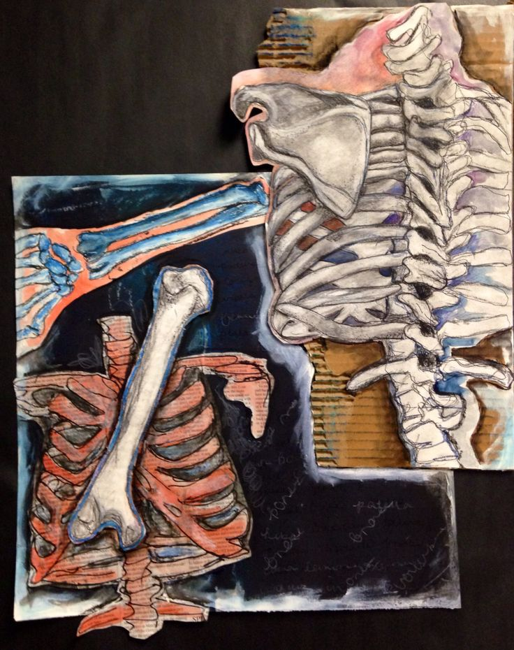 Altered Book #6 - Art of Anatomy - room 416