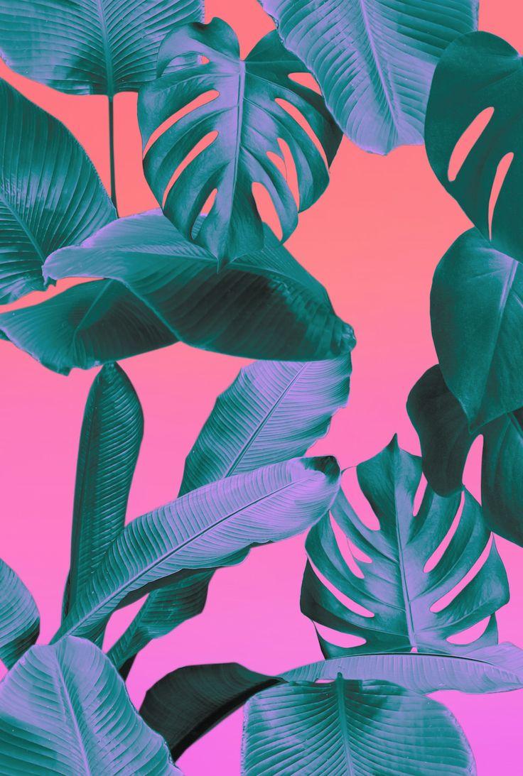 Neon iphone wallpaper tumblr - Leafy Print Wallpaper Or Wall Decor Rhiannaellingtondesigns Rhiannaellington Com Rhiannaellington