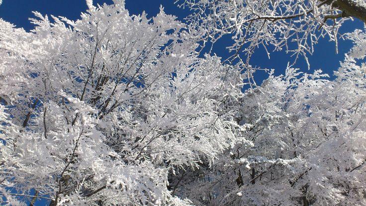 Zima w Czarna Góra styczeń 2015r