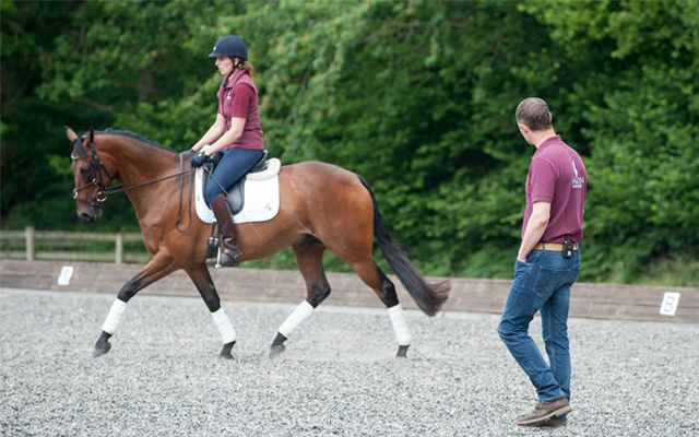 Spencer Wiltonäó»s tips to improve your ex-racehorseäó»s dressage marks - Horse & Hound http://www.horseandhound.co.uk/features/spencer-wiltons-tips-to-improve-your-ex-racehorses-dressage-marks-503230