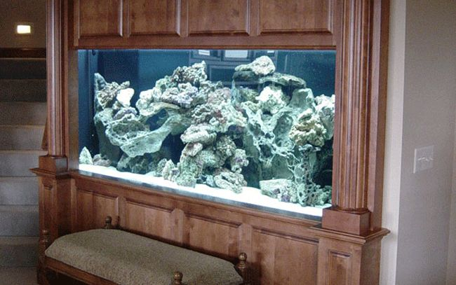 Midwest Custom Aquarium A Leader In Custom Acrylic