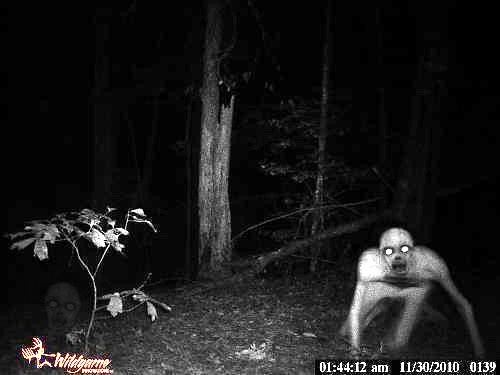 Dover Demon. Google it. there is a lot said about it.