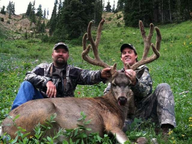 17 best images about fmah monster muleys on pinterest for Utah game and fish