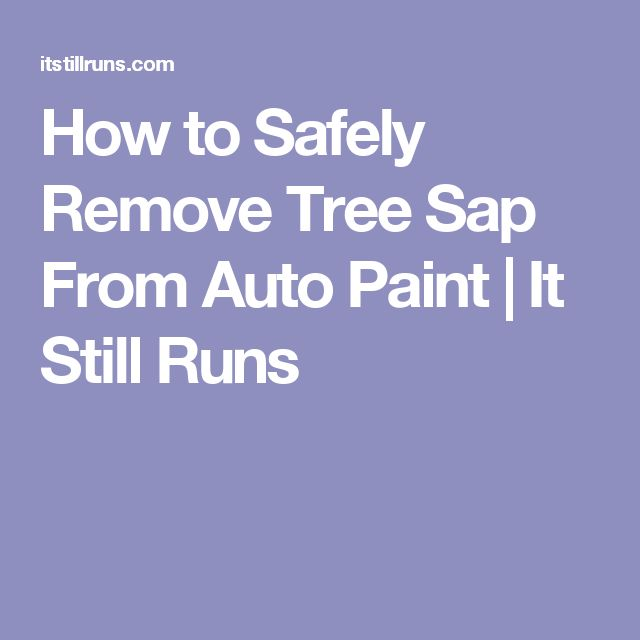 How to Safely Remove Tree Sap From Auto Paint | It Still Runs