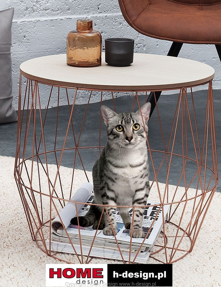 Cat bed and wire storage side table in one. 2 in 1.