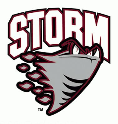 The Guelph Storm is our local OHA hockey team! They play at the Sleeman Centre downtown and make for a great winter outing with friends.