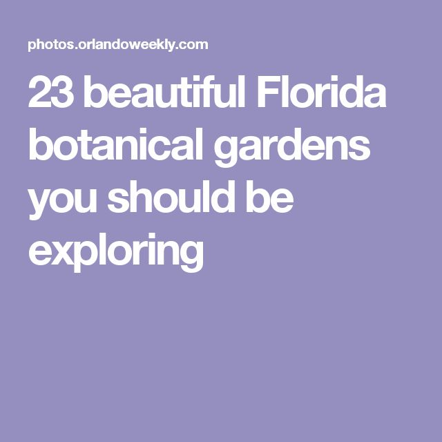 23 beautiful Florida botanical gardens you should be exploring
