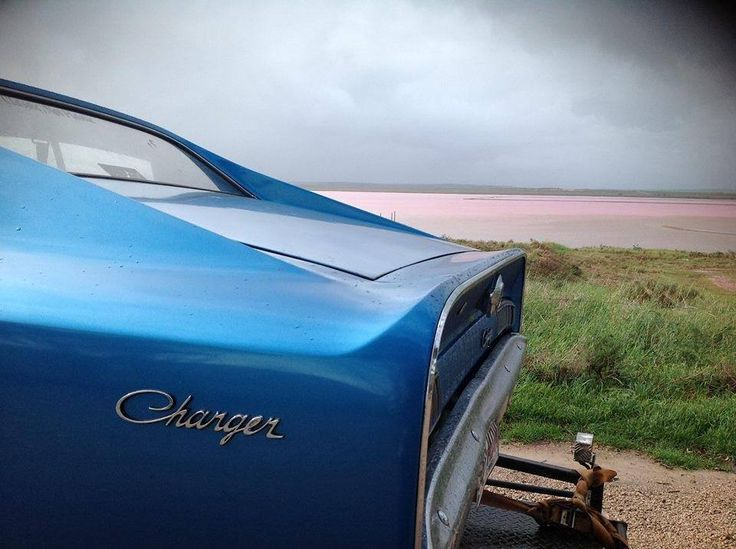 Charger at the Beach