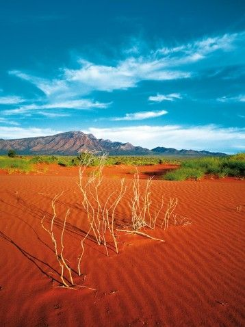 Flinders Ranges, South Australia © Steve Parish/Nature Connect