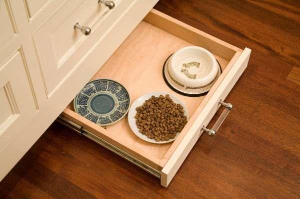 Un coin repas pour votre animal de compagnie dans un tiroir