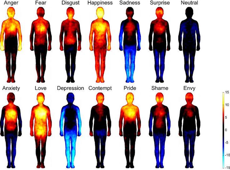 Gefühls-Barometer: Gelb-rot steht für erhöhte Aktivität (z.B. Blutdruck, Temperatur), blau für schwächere Reaktionen (z.B. Erstarrung)